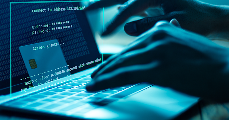 Webinar: How to Address Fraud Through the Use of Risk Analytics